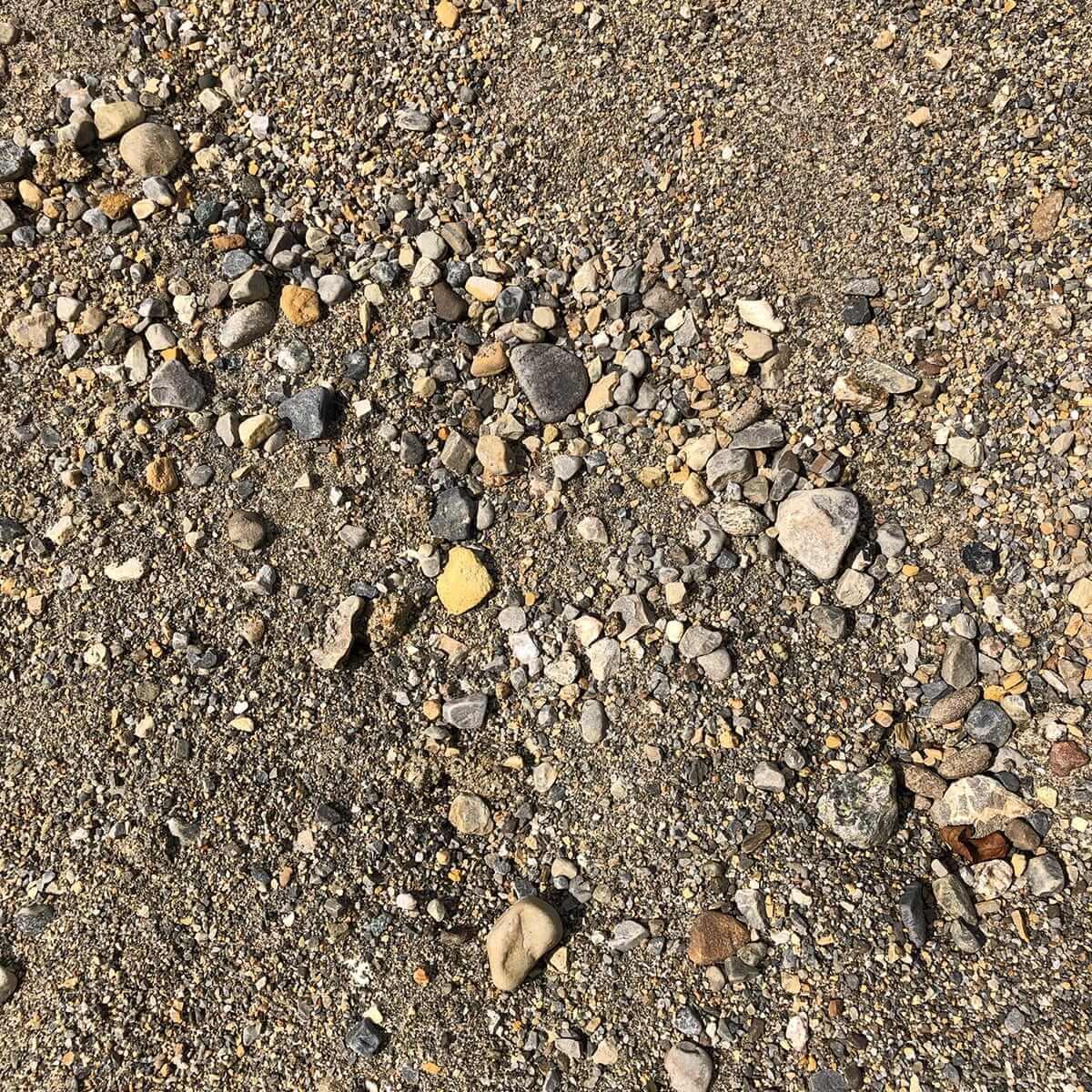 Sandy-Fill-min.jpg